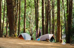 Summer Is Over: Wash & Store Your Camping Gear