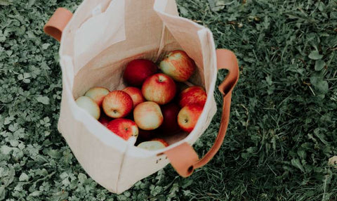 tips for sustainable fall apple picking