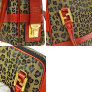 FENDI Leopard Pattern 2way Hand Bag Brown Red