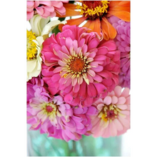 Load image into Gallery viewer, Zealous Zinnias Paint by Number Kit