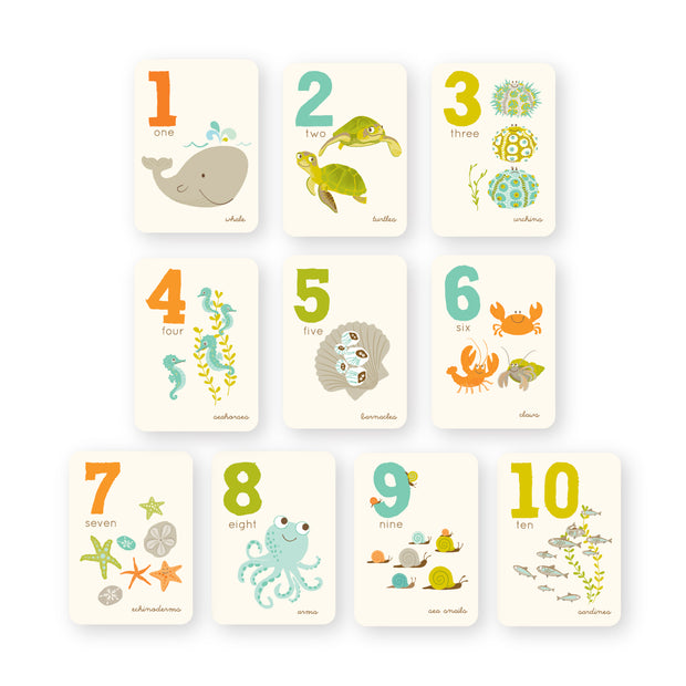 123 | Ocean Numbers Counting Cards 1