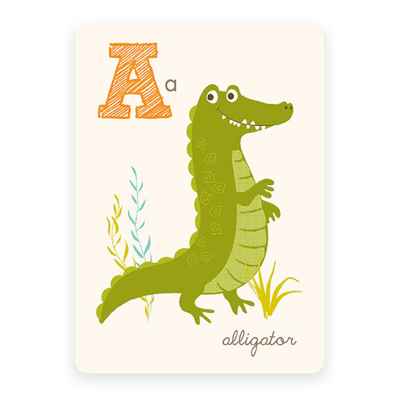 Alligator | ABC Card