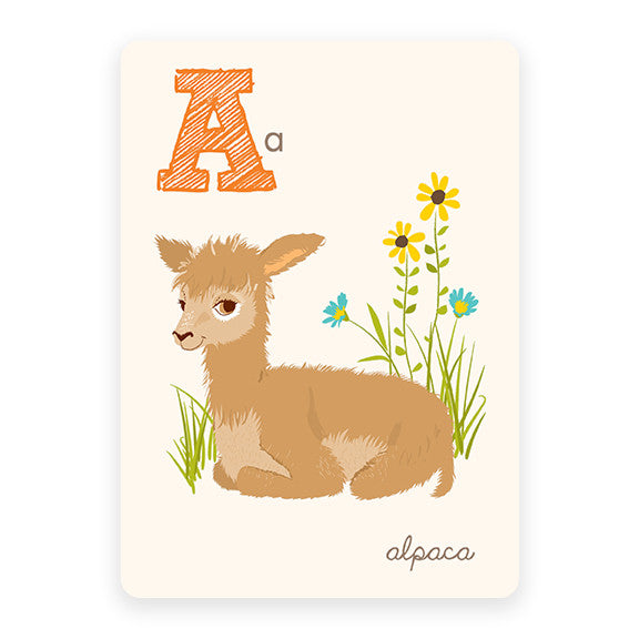 Alpaca | ABC Card