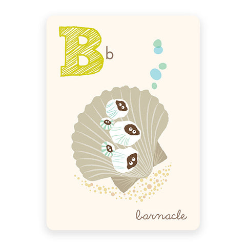 Barnacle | ABC Card