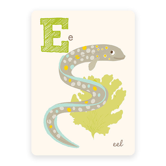 Eel | ABC Card