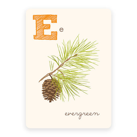 Evergreen | ABC Card