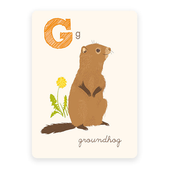 Groundhog | ABC Card