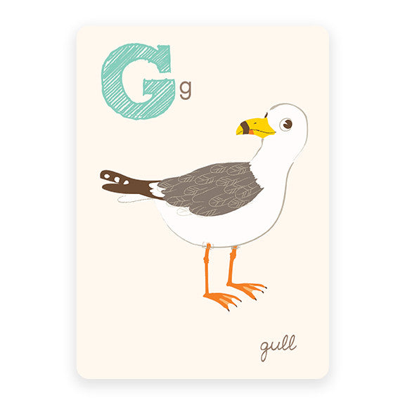 Gull | ABC Card