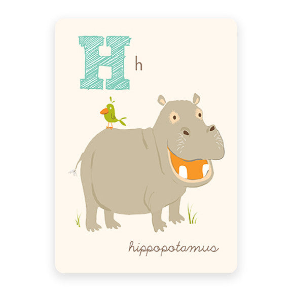 Hippopotamus | ABC Card