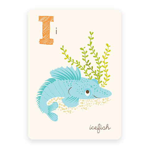 Icefish | ABC Card