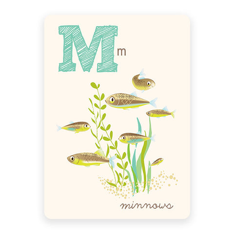 Minnows | ABC Card