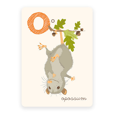 Opossum | ABC Card