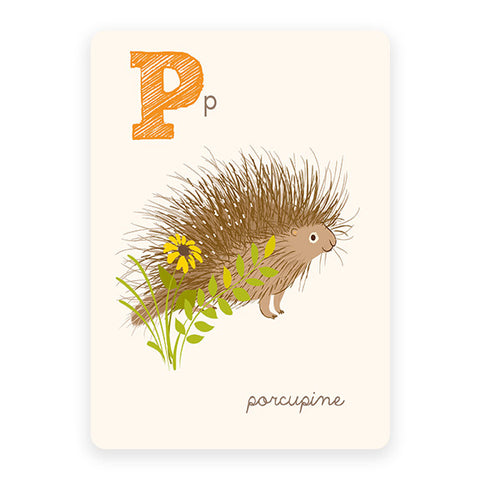 Porcupine | ABC Card