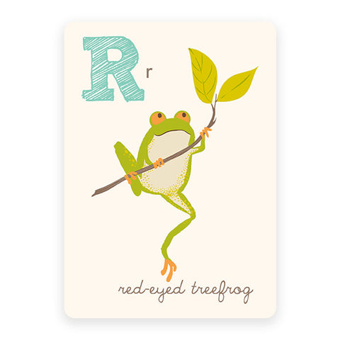 Red-eyed treefrog | ABC Card