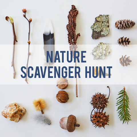 Nature Scavenger Hunt  - Printable