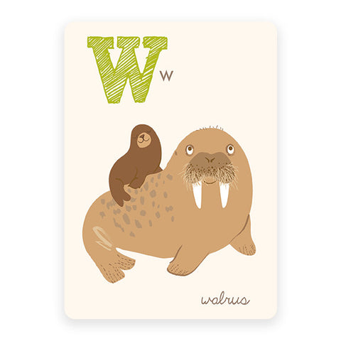 Walrus | ABC Card