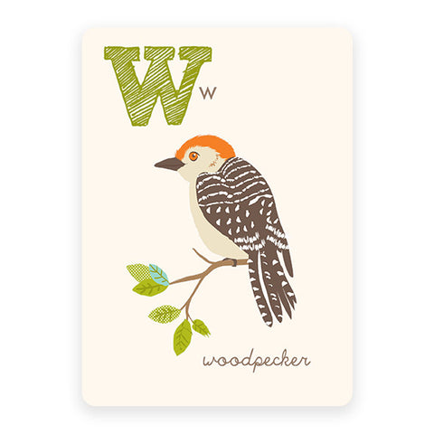 Woodpecker | ABC Card