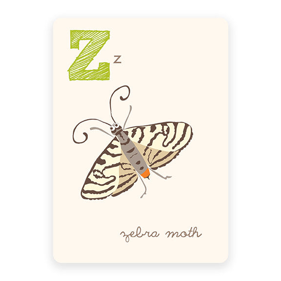 Zebra Moth | ABC Card