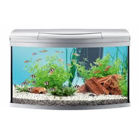 Tetra - Aquarium Aqua Artii Led Com. Set Anthracite - zoofast-shop