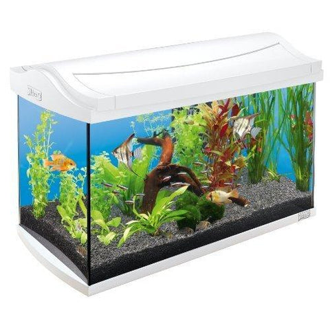 Tetra - Aquarium Aqua Art Complete Set 60L 61.5x34x43cm - zoofast-shop