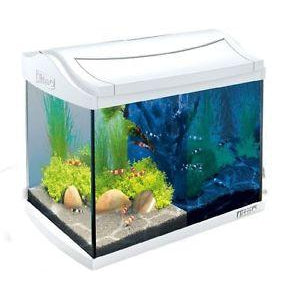 Tetra - Aquarium Aqua Art Led Shrimps 20L - zoofast-shop