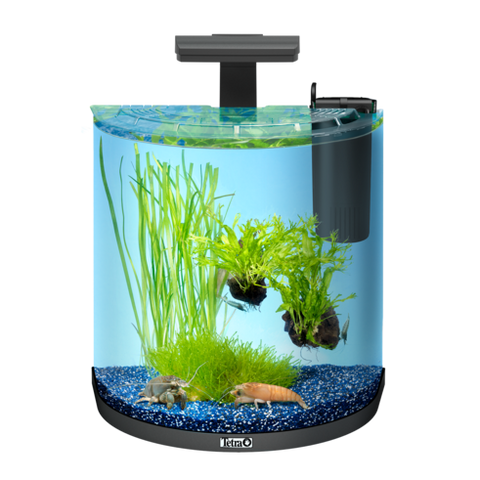 Tetra - Aquarium Aqua Art Exp. Line Crayfish Comp. Set Black 30L - zoofast-shop