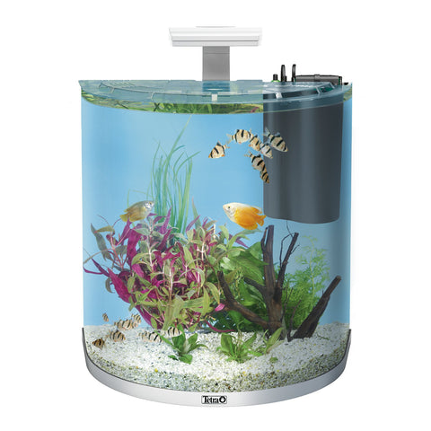 Tetra - Aquarium Aqua Art Exp. Led Comp. Set Trop White 60L - zoofast-shop