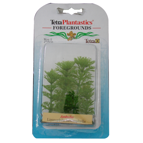Tetra - Plant Decorative Foregrounds Ambulia 5cm