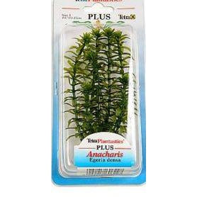 Tetra - Plant Plus Anacharis - zoofast-shop