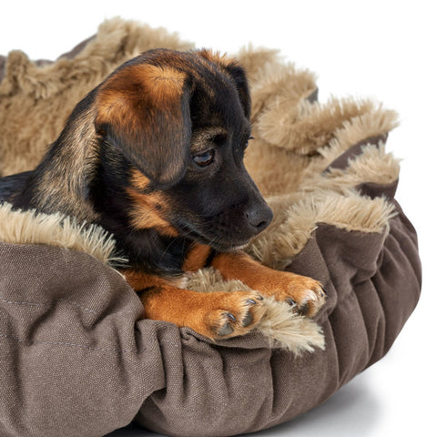 Hunter - Bed for Dog Tilburg
