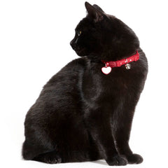 Hunter - Collar For Cat Dots Glossy Dots