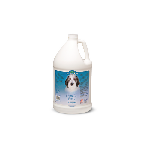 Bio Groom - Shampoo For Dogs Groom N Fresh 3.8L - zoofast-shop