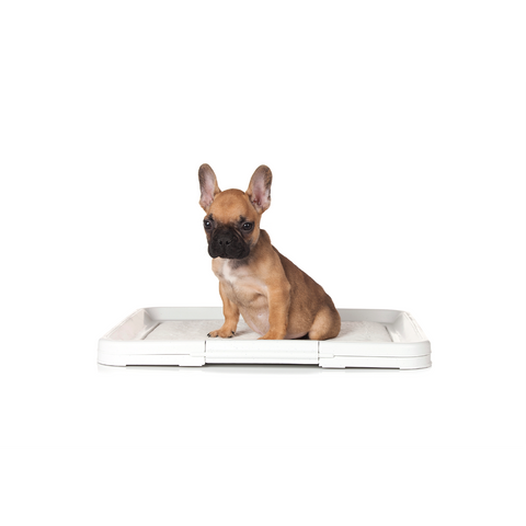Hunter - Toilet For Puppies 48x40cm - zoofast-shop