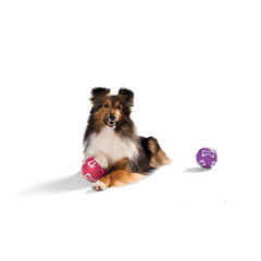 Hunter - Toy For Dog Ball Vanilla Flavour - zoofast-shop