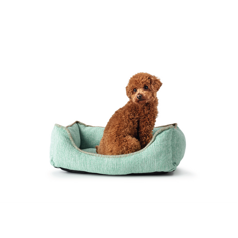 Hunter - Sofa For Dog Lomma Mint Green S 60x40cm - zoofast-shop