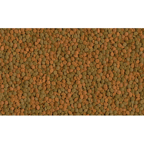 Tetra - Food For Fish Wafer Mix 48g-100ml
