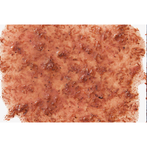 Tetra - Food For Fish Freshdelica Krill 16x3g-48g