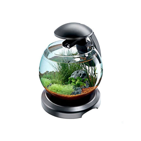 Tetra – Aquarium Cascade Globe Led 6.8L