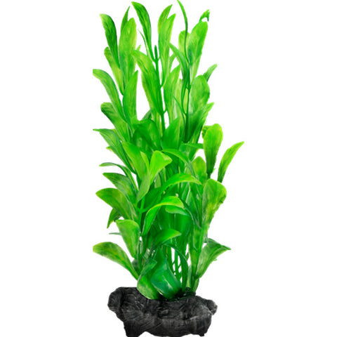 Tetra – DecorArt Plant Weighted Hygrophila