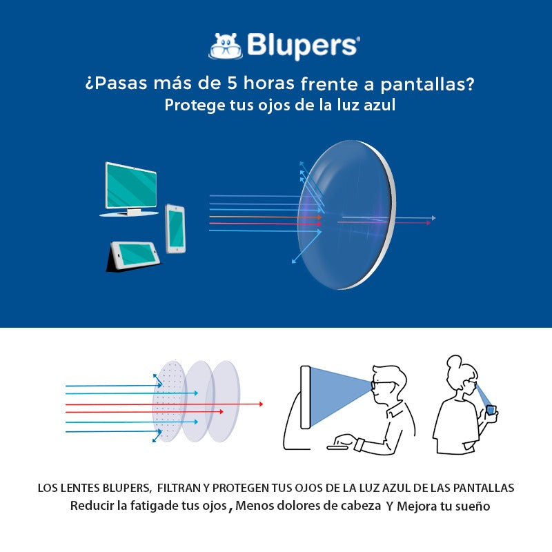 Blupers - 1873 C1 - Adulto