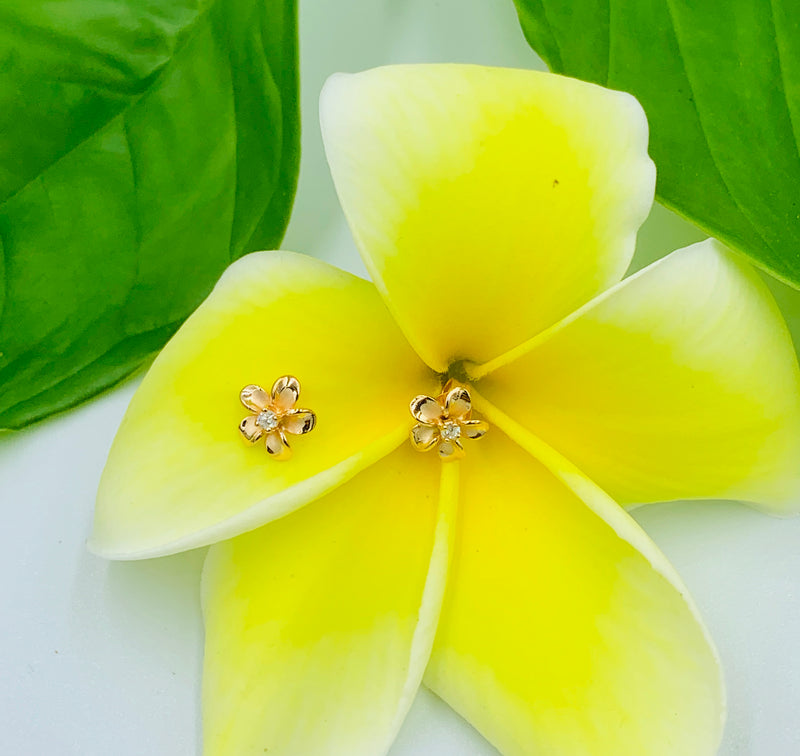 925 Sterling Silver Gold Plated Plumeria Stud Earrings - Hawaiian Earrings - Ladies Stud Earrings.  Gifts For Her.  Plumeria Earrings. Womens Stud Earrings