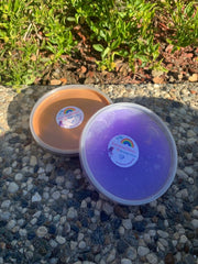 Peanut Butter and Grape Jelly Slime Duo