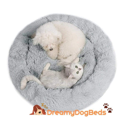 Dreamy calming soothing dog beds
