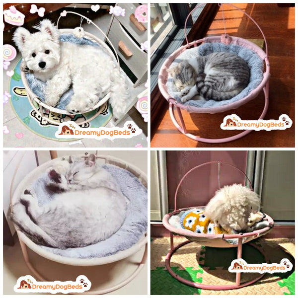 dreamy dog beds, calming beds, cats and dogs