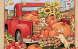 Little Red Truck at Harvest delivering pumpkins and fall flowers.  Colors of orange yellow brown gold and red.
