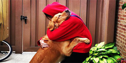 Pets, touch and COVID-19: Why our furry friends are lifesavers: