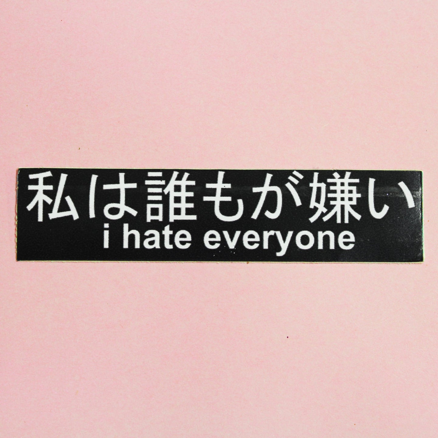 I HATE EVERYONE STICKER