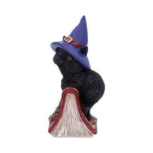 Hocus Small Witches Familiar Black Cat and Spell book Figurine