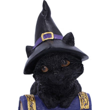 Load image into Gallery viewer, Pocus Small Witches Familiar Black Cat and Spell book Figurine