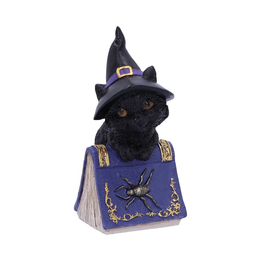 Pocus Small Witches Familiar Black Cat and Spell book Figurine